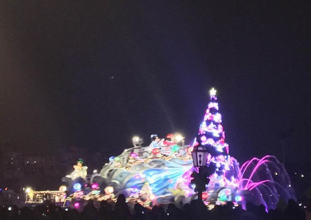 ちなみにショーはこんな感じの、クリスマスバージョン
