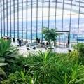 地上約155m!ロンドン「スカイ・ガーデン」から見下ろす360度の絶景