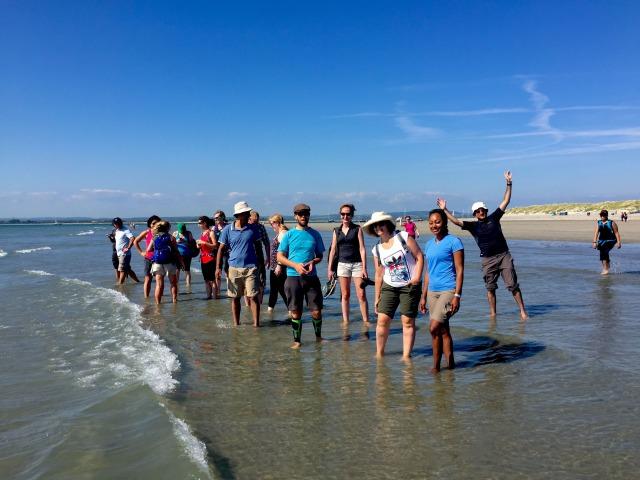 ビーチが砂浜の海「チチェスター」