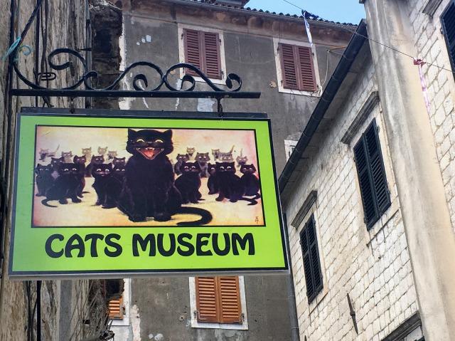 猫にまつわる色んなアイテムが展示されているコトルの猫博物館