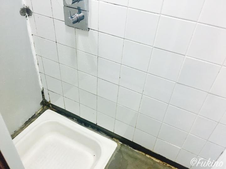 シャワーを浴びる最低限のスペース
