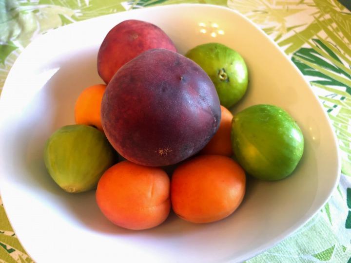 Airbnbトラブル解消記事:ホストの父がそっと置いた果物の盛り合わせ